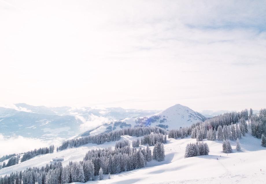 Winter Ski Snow Trees